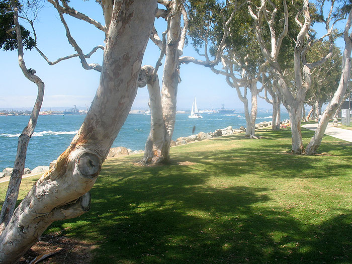 embarcadero-marina-park-south1