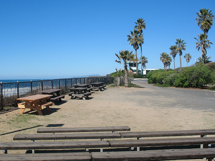 south-carlsbad-state-beach-campground2