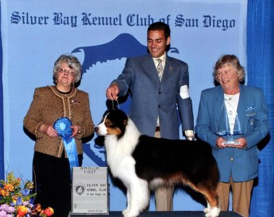 Silver Bay Kennel Club Dog Show
